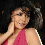 Haifa Wehbe Net Worth (Arab Singer)